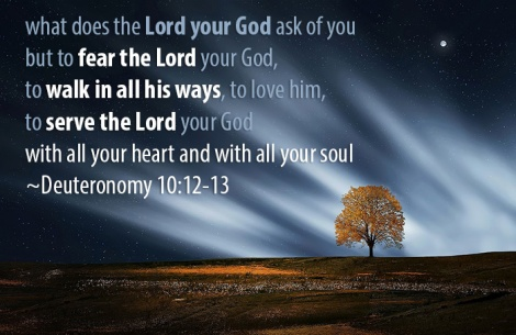 what does the Lord your God ask of you but to fear the Lord your God, to walk in all his ways, to love him, to serve the Lord your God with all your heart and with all your soul