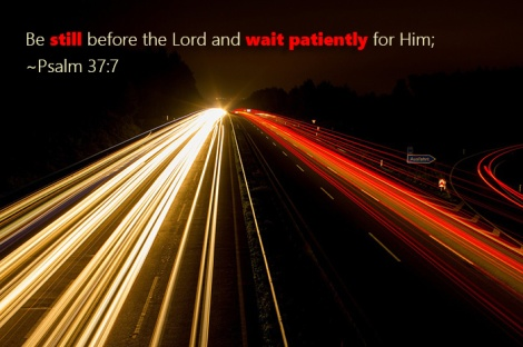 Be still before the Lord and wait patiently for Him; ~Psalm 37:7
