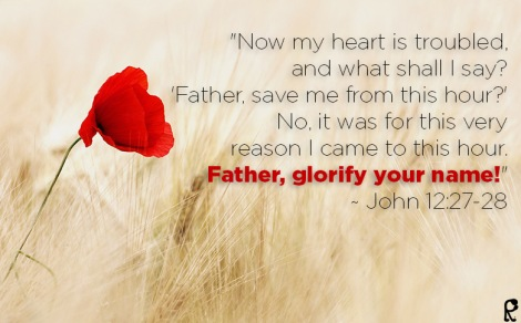 """Now my heart is troubled, and what shall I say? 'Father, save me from this hour?' No, it was for this very reason I came to this hour. Father, glorify your name!"" ~ John 12:27-28"