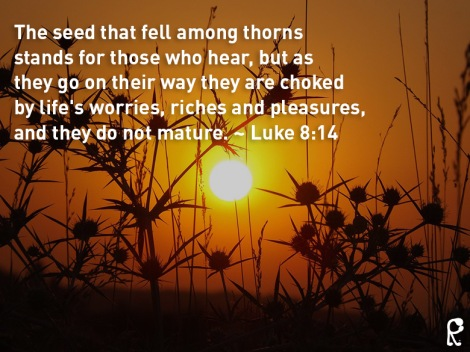 The seed that fell among thorns stands for those who hear, but as they go on their way they are choked by life's worries, riches and pleasures, and they do not mature. ~ Luke 8:14