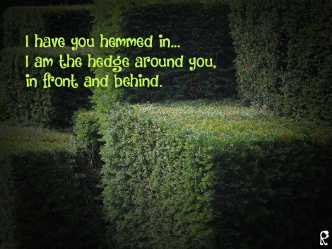 I have you hemmed in... I am the hedge around you, in front and behind.