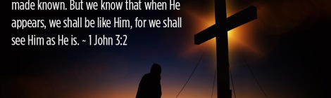 Dear friends, now we are children of God, and what we will be has not yet been made known. But we know that when He appears, we shall be like Him, for we shall see Him as He is. ~ 1 John 3:2