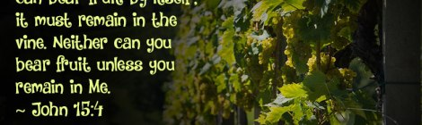 Remain in Me, as I also remain in you. No branch can bear fruit by itself; it must remain in the vine. Neither can you bear fruit unless you remain in Me. ~ John 15:4