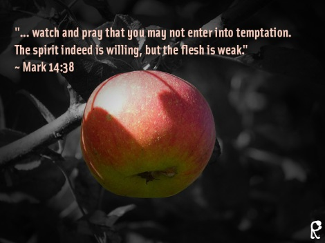 """""""... watch and pray that you may not enter into temptation. The spirit indeed is willing, but the flesh is weak."""" ~ Mark 14:38"""