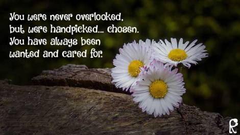 You were never overlooked, but were handpicked... chosen. You have always been wanted and cared for.