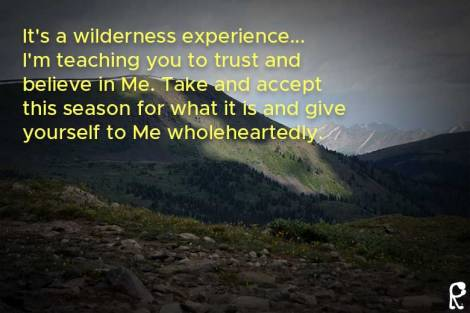 It's a wilderness experience... I'm teaching you to trust and believe in Me. Take and accept this season for what it is and give yourself to Me wholeheartedly.