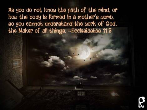 As you do not know the path of the mind, or how the body is formed in a mother's womb, so you cannot understand the work of God, the Maker of all things. ~Ecclesiastes 11:5