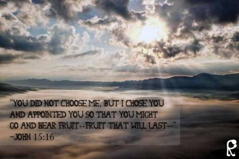 """""""You did not choose Me, but I chose you and appointed you so that you might go and bear fruit--fruit that will last--"""" ~John 15:16"""