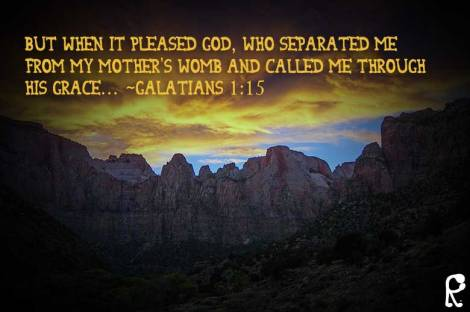 But when it pleased God, who separated me from my mother's womb and called me through His grace… ~Galatians 1:15