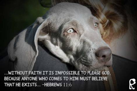 ...without faith it is impossible to please God, because anyone who comes to Him must believe that He exists... ~Hebrews 11:6