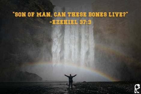 """Son of man, can these bones live?"" ~Ezekiel 37:3"