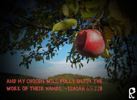 And My chosen will fully enjoy the work of their hands. ~Isaiah 65:22b
