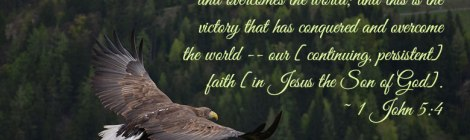 For everyone born of God is victorious and overcomes the world; and this is the victory that has conquered and overcome the world -- our [continuing, persistent] faith [in Jesus the Son of God]. ~ 1 John 5:4