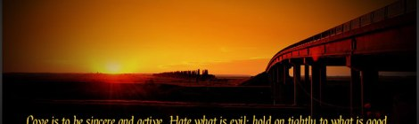 Love is to be sincere and active. Hate what is evil; hold on tightly to what is good... ~Romans 12:9-10